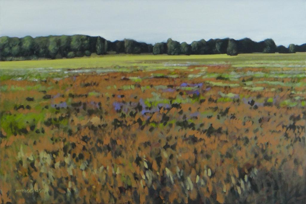 Field Near Ballston   Marilyn Higginson